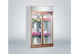 Tủ trưng bày hoa tươi 2 cánh Southwind 18ZA-2 1