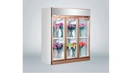 Tủ trưng bày hoa tươi 3 cánh Southwind 18ZA-3 2
