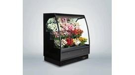 Tủ rèm trưng bày hoa tươi Southwind 18AH 2