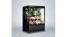 Tủ rèm trưng bày hoa tươi Southwind 17YH 2