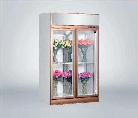 Tủ trưng bày hoa tươi 2 cánh Southwind 18ZA-2