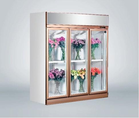 Tủ trưng bày hoa tươi 3 cánh Southwind 18ZA-3