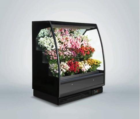 Tủ rèm trưng bày hoa tươi Southwind 18AH