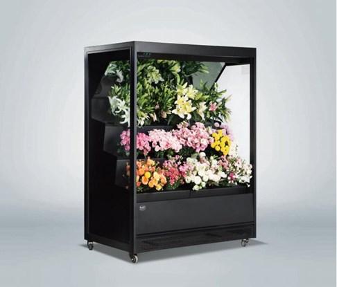 Tủ rèm trưng bày hoa tươi Southwind 17YH