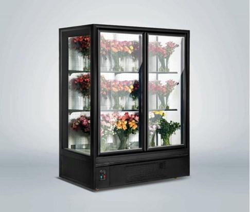 Tủ trưng bày hoa tươi 2 cánh Southwind 14FE-2D